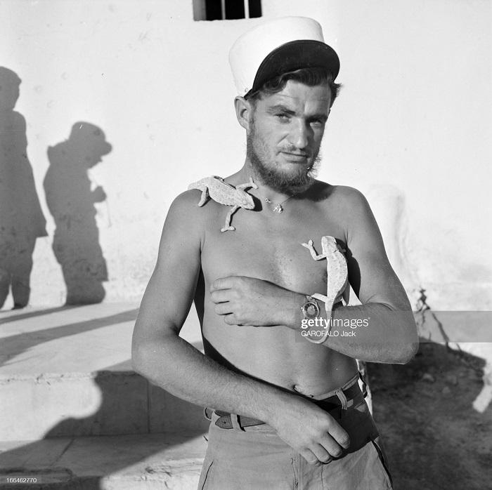 с ящерицами 9 июля 1955 дж гарафало.jpg