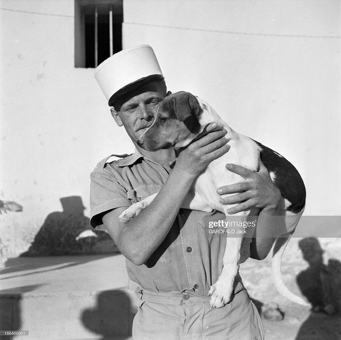 с собакой 9 июля 1955 Дж гарафало 4.jpg