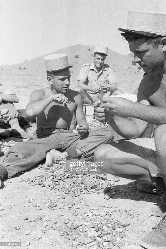 чистят картошку 9 июля 1955 дж гарафало.jpg