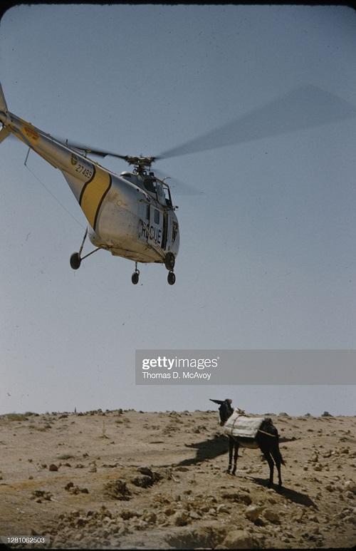 вертолет 1954 томас макэвой.jpg