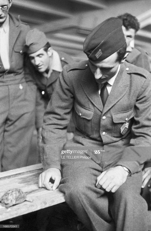 Возвращение резервистов с черепахой 23 окт 1956  Ф Ле теллье 2.jpg