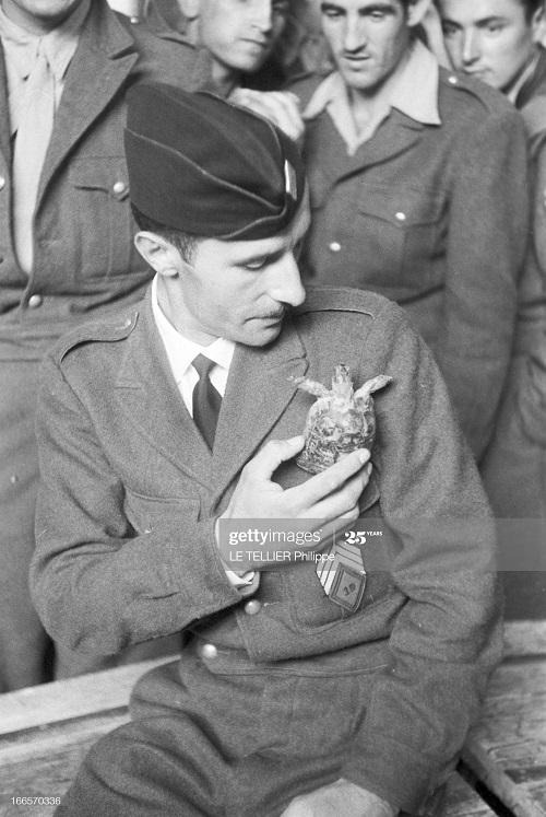 Возвращение резервистов с черепахой 23 окт 1956  Ф Ле теллье.jpg