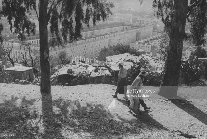 новые кварталы на окраинах алжира сент 1957 г сохурек.jpg