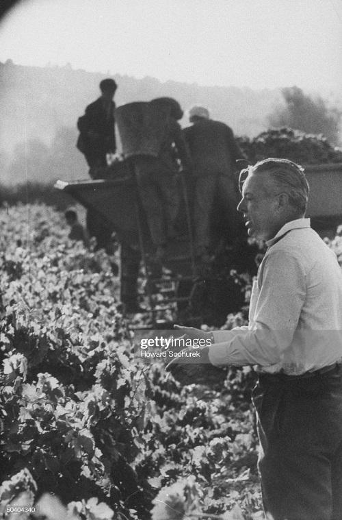 Робер Беген фермер сент 1957 г сохурек.jpg