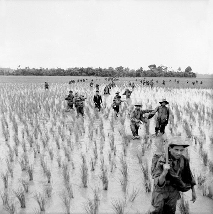 Продвиж по рисовым полям.jpg