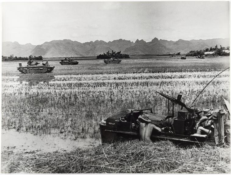 продвижение по рисовому полю 26 июня 1954.jpg