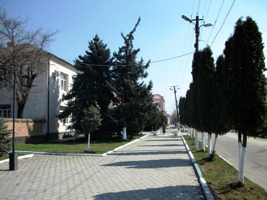 Орджоникидзевская (3).JPG