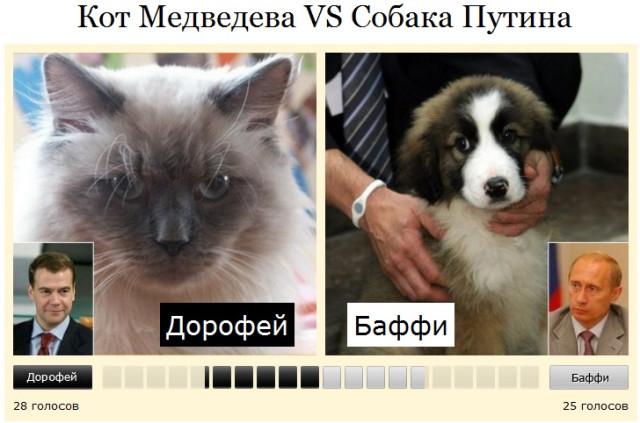 кот медведева против собаки путина