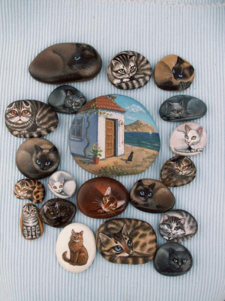 домик и кошки