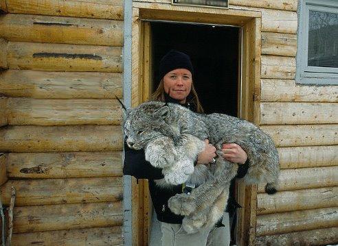 animals_prikol (47)