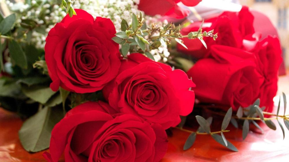 5082418-mahrovye-krasnye-rozy-na-8-marta