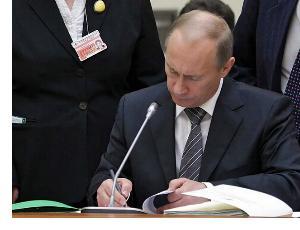 Лысый Путин