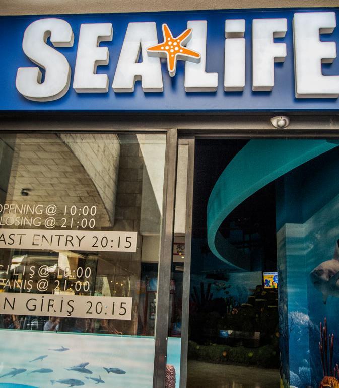 Стамбул аквариум