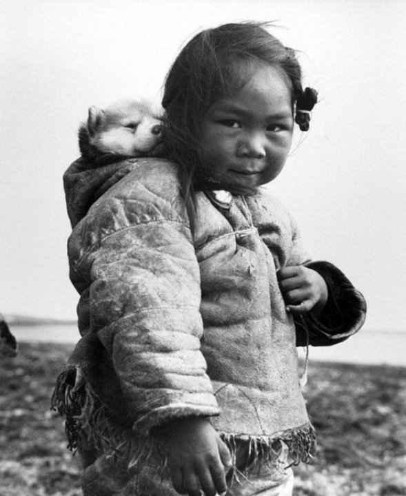 Маленькая эскимоска и её хаски, 1949