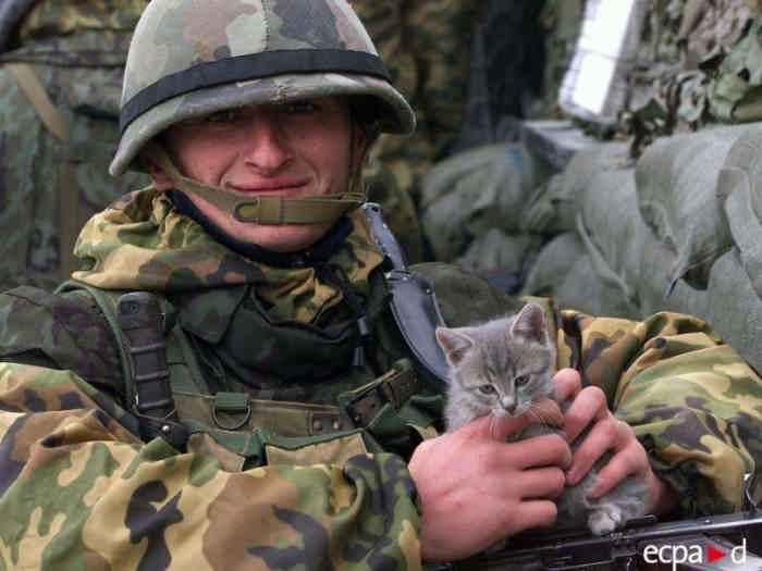 Ноябрь 2001 года, Косово, Србица
