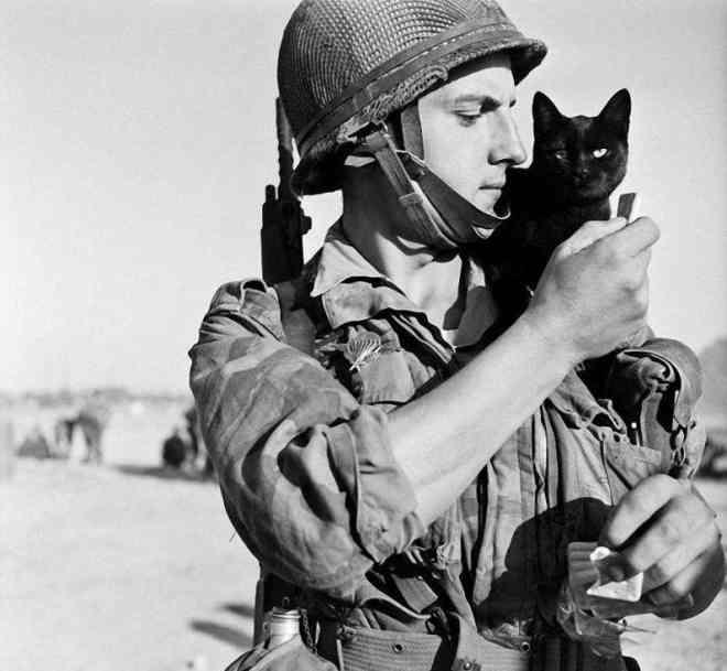 1956 год, Кипр