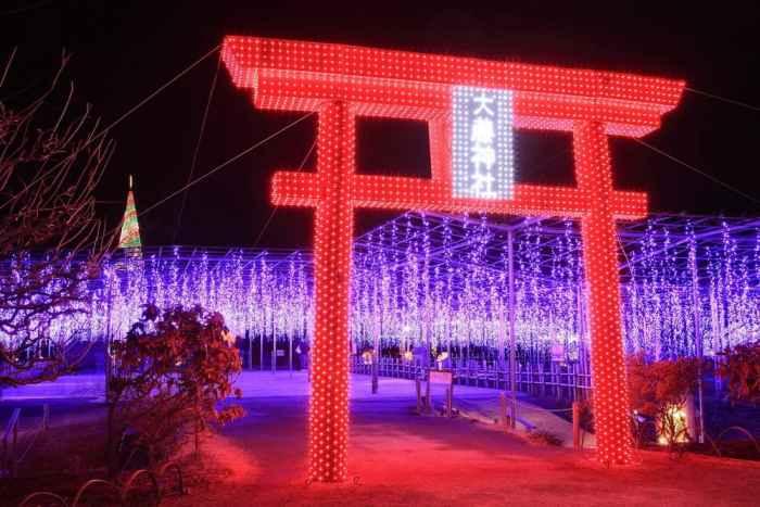 Парк Асикага в Говый Год