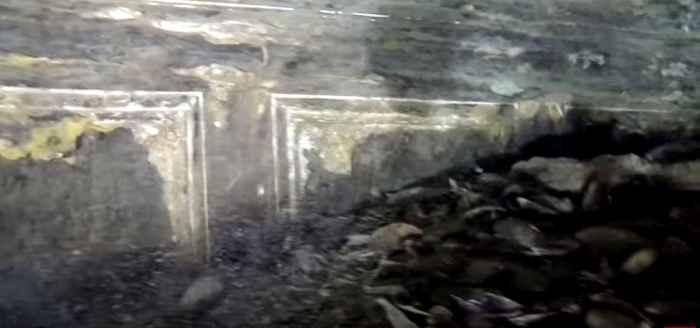 картины на затонувшем пароходе
