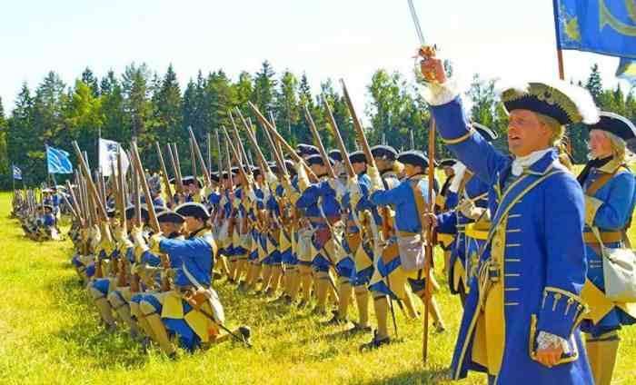 Шведская армия, 1708