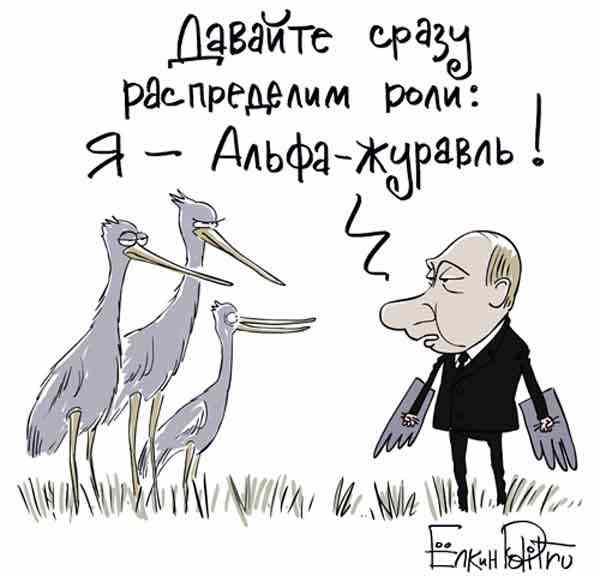 Путин альфа-журавль