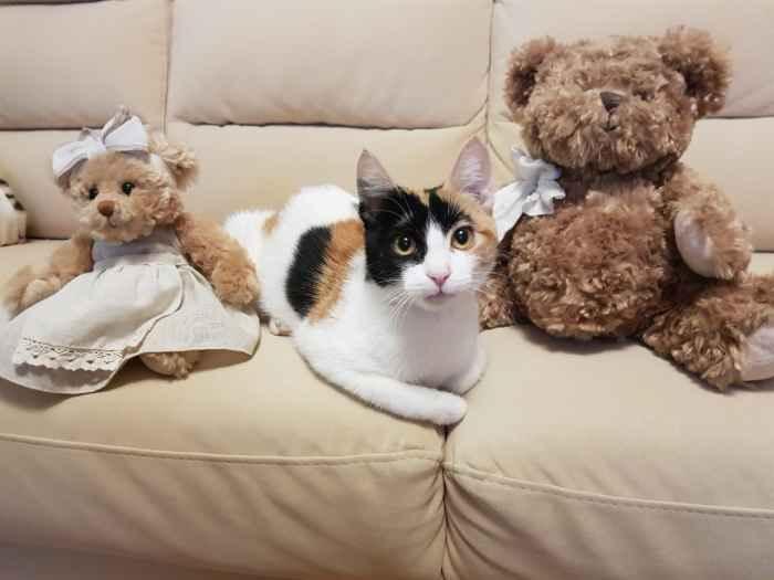 Марфушенька - Душенька на диване