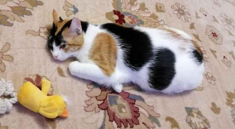 Марфушенька - Душенька со своей игрушкой