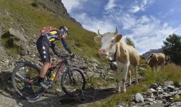Велогонка в Швейцарии