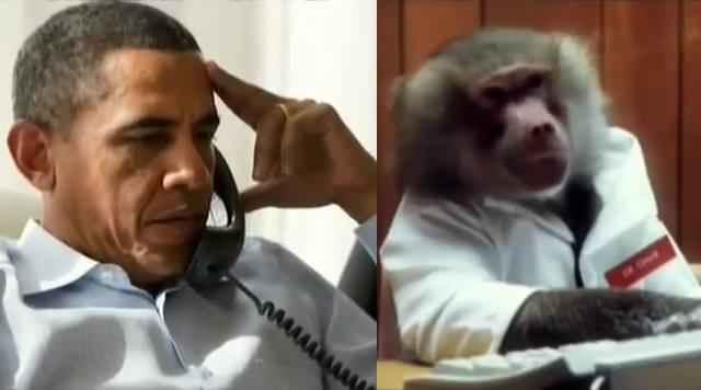 Обама и обезьяна
