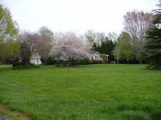 House in April 2008 #2