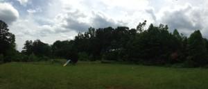 cedarfieldempty