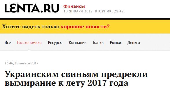 Украинским свиньям предрекли вымирание к лету 2017 года