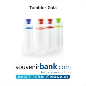 Souvenir Bank - Souvenir Tumbler Carino.jpg