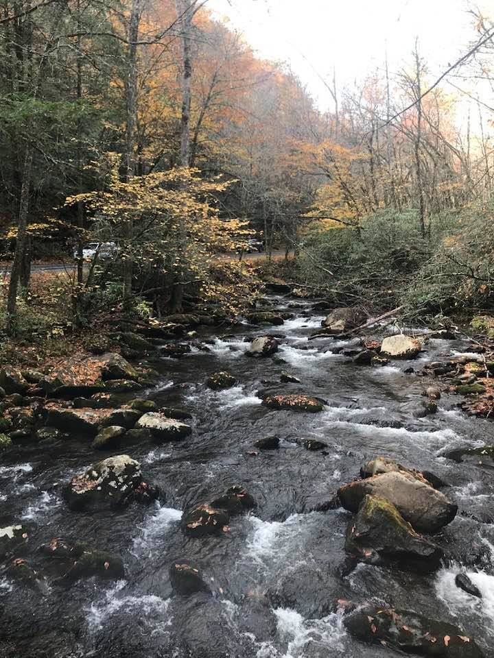 Just off Dragon's Tail between TN & NC. So gorgeous and peaceful. There was a trail there that I would have hiked had it not been for my travel-mates who just wanted to get to Cherokee!