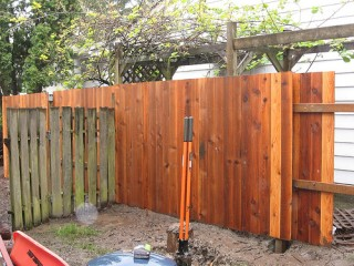 Project 45: fence
