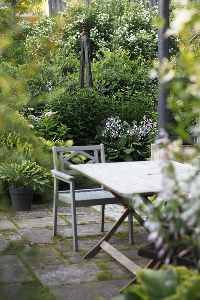 Сад в середине лета и струйный полив 20.jpg