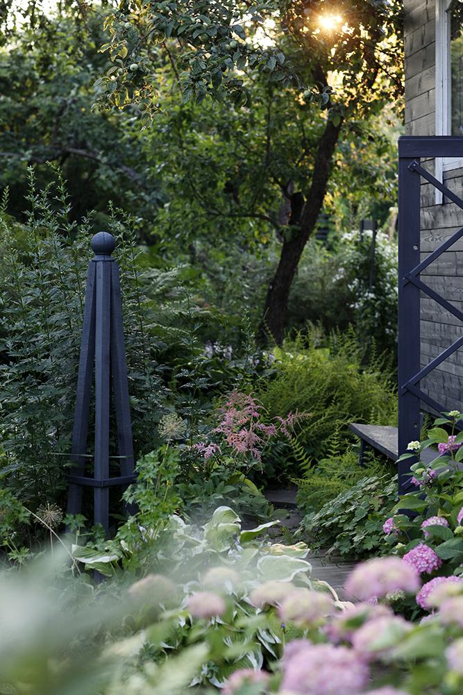 Сад в середине лета и струйный полив 25.jpg