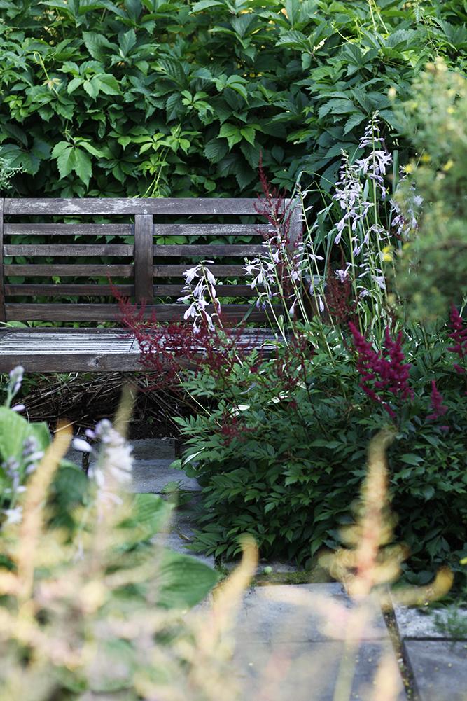 Сад в середине лета и струйный полив 31.jpg