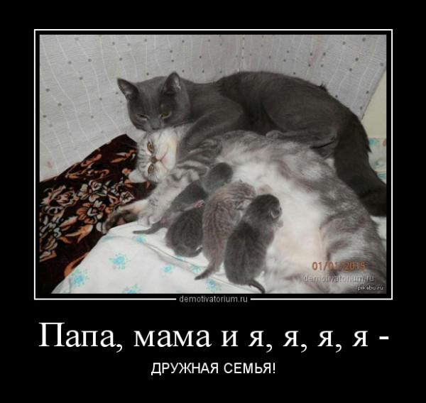 dm_temp_image_30303152220577693325