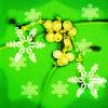 mistletoe 6