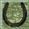 batch3-7 - horseshoe