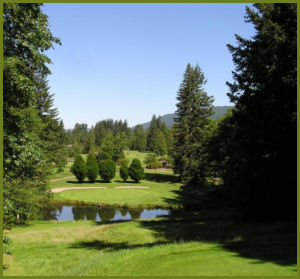 The Resort at the Mountain - golf course and scenery