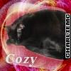 colin kitty cozy