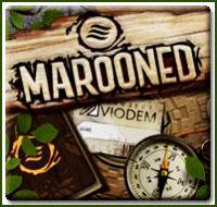 """""""Marooned"""" hog"""