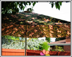 Deck Umbrella - 1
