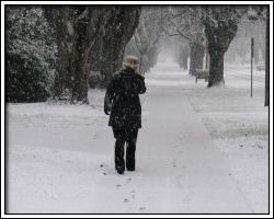 2009 December snow - walk in the park - 1