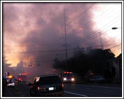 Shamrock's on fire