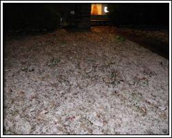 2010 Nov 22 - snow