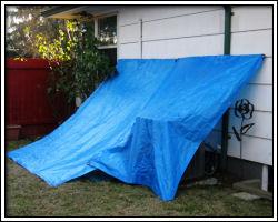 January 2, 2011 - tarp