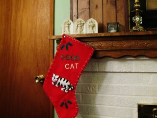 2011 Christmas - cat sock