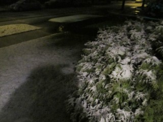 March 21, 2012 - SNOW - 3
